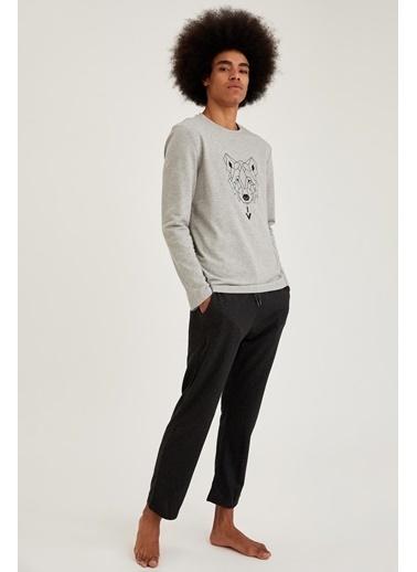 Defacto –Fit Kurt Baskılı Regular Fit Pijama Takım Gri